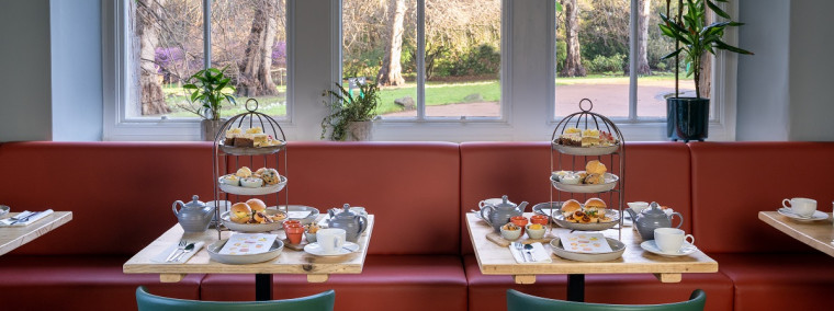 Botanics - Afternoon Tea for two